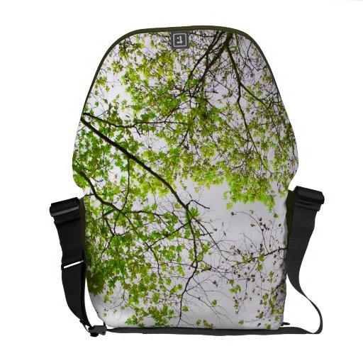 árboles bolsa de mensajeria