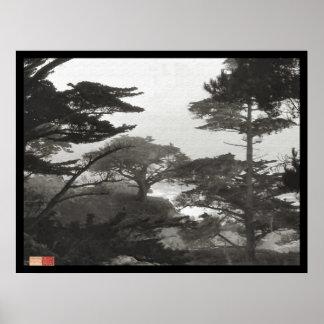 Árboles - Carmel por el mar California Posters