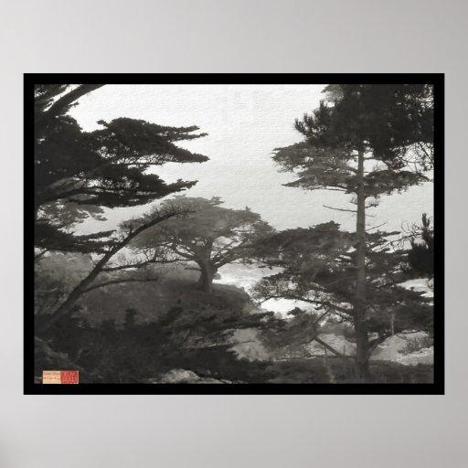 Árboles - Carmel por el mar, California Posters