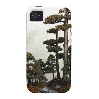 Árboles chinos de los bonsais del enebro Case-Mate iPhone 4 fundas
