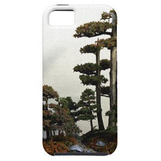 Árboles chinos de los bonsais del enebro iPhone 5 cobertura