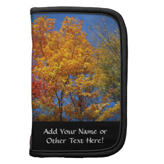 Árboles coloridos del otoño organizador