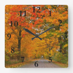 Árboles coloridos del otoño reloj cuadrado