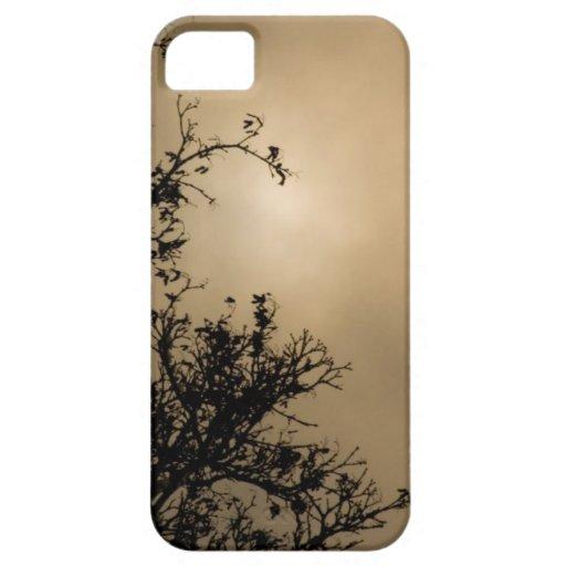 Árboles contra puesta del sol de oro iPhone 5 coberturas