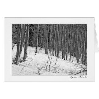 Árboles de abedul en Nieve-Negro y blanco Tarjeta De Felicitación
