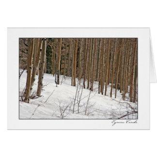 Árboles de abedul en nieve tarjeta de felicitación