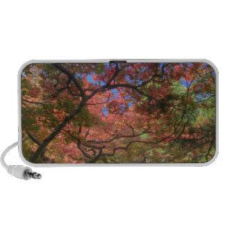 Árboles de arce del color del otoño, Victoria, Bri Mini Altavoz