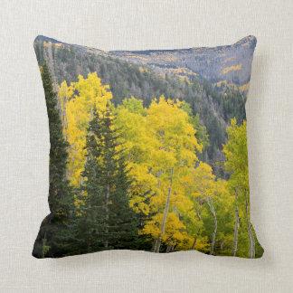 Árboles de Aspen (Populus Tremuloides) y coníferas Cojín