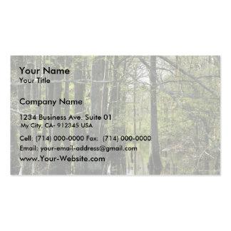 Árboles de ciprés calvo en pantano tarjetas de visita