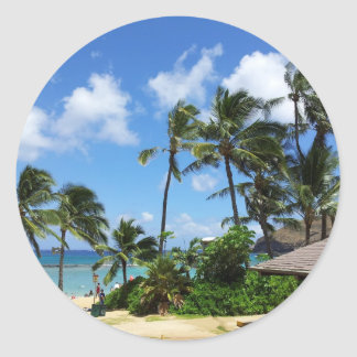 Árboles de coco de Hawaii de la bahía de Hanauma Etiqueta Redonda