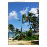 Árboles de coco de Hawaii de la bahía de Hanauma Tarjeta