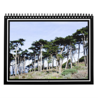 Árboles de Cypress en el parque de Sutro, San Fran Calendarios De Pared