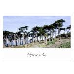 Árboles de Cypress en el parque de Sutro, San Tarjetas De Visita Grandes
