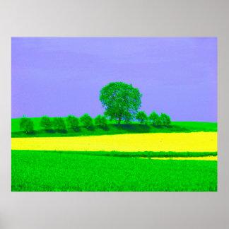 Árboles de fruta, paisaje de campo en la primavera posters