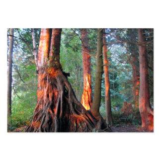 Árboles de fuego tarjetas de negocios
