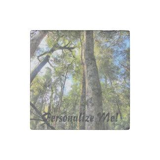 Árboles de goma australianos de eucalipto de la imán de piedra