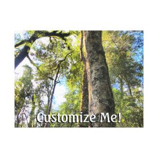 Árboles de goma australianos de eucalipto de la lienzo envuelto para galerías
