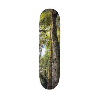 Árboles de goma australianos de eucalipto de la patinetas personalizadas