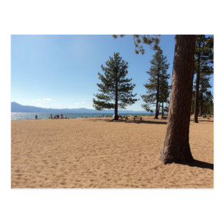 Árboles de hoja perenne del lago Tahoe Postal