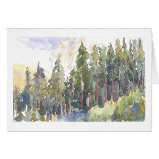Árboles de hoja perenne del noroeste en cuesta de tarjeta de felicitación