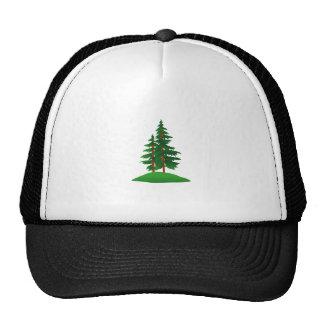 Árboles de hoja perenne gorras de camionero