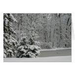 Árboles de hoja perenne Notecard del invierno Tarjetas