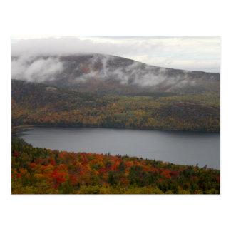 Árboles de la caída del Acadia Postales