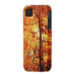 Árboles de la caída iPhone 4 carcasa