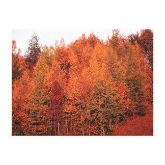 Árboles de la caída impresión en lona