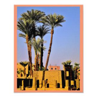 Árboles de la fecha del templo de Karnak Fotografía