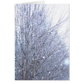 Árboles de la nieve tarjeta de felicitación