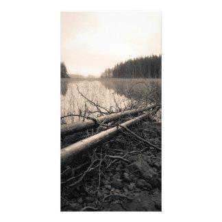 Árboles de la orilla tarjeta personal con foto