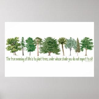 Árboles de la planta - amante del árbol Hugger Poster