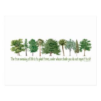 Árboles de la planta - amante del árbol, Hugger Postal