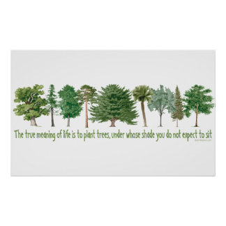 Árboles de la planta - amante del árbol, Hugger Póster