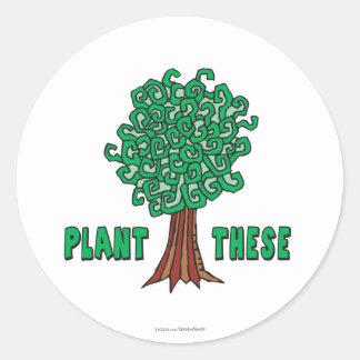 Árboles de la planta pegatina redonda