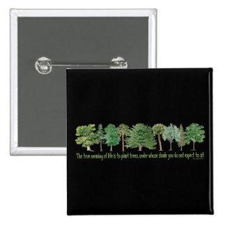 Árboles de la planta pin cuadrado