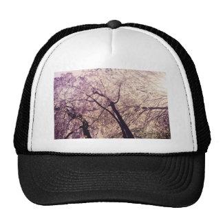 Árboles de la primavera del Central Park Gorros Bordados