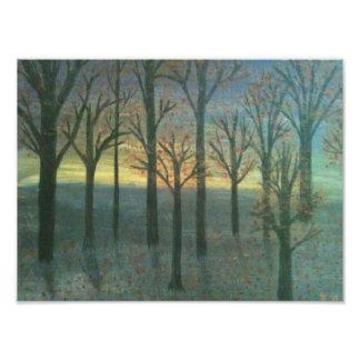 Árboles de la puesta del sol fotografía