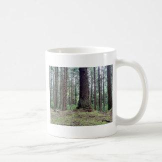 Árboles de la secoya taza