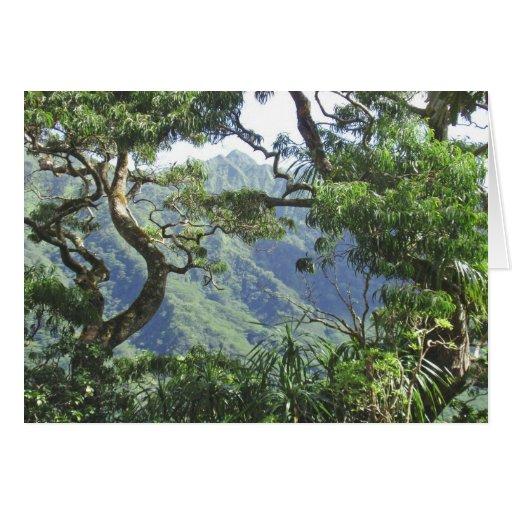 Árboles de las montañas y de Koa de Ko'olau Tarjeton