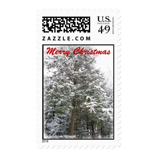 Árboles de Navidad Nevado en un bosque del país de Sellos Postales