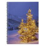 Árboles de navidad, Park City, montañas de Wastch, Libros De Apuntes