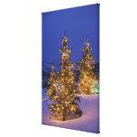 Árboles de navidad, Park City, montañas de Wastch, Lona Estirada Galerías