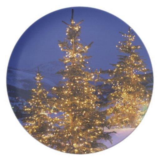 Árboles de navidad, Park City, montañas de Wastch, Plato De Cena
