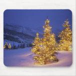 Árboles de navidad, Park City, montañas de Wastch, Tapetes De Ratón