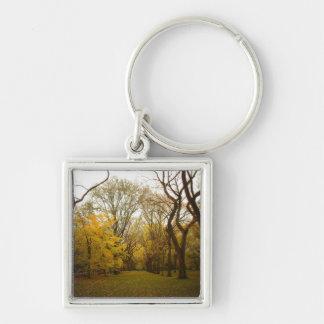 Árboles de olmo del otoño en el Central Park, New  Llavero Cuadrado Plateado