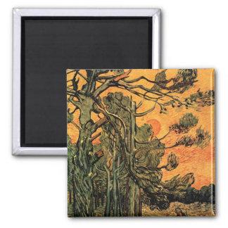 Árboles de pino de Van Gogh contra el sol poniente Imán Cuadrado