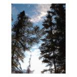 Árboles de pino hermosos membretes personalizados