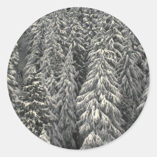 Árboles de pino nevados pegatinas redondas